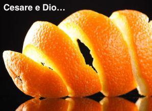bucce-di-arancia